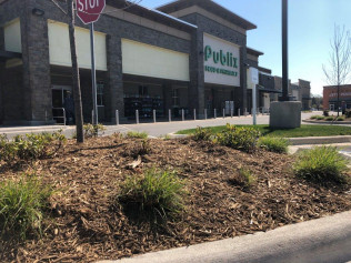 Commercial landscaping in Monroe, Indian Trail, Waxhaw & Matthews, NC
